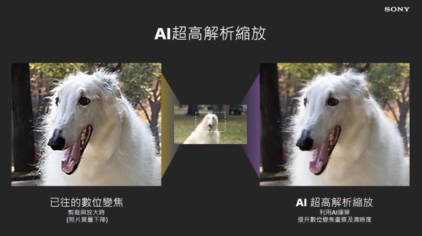 Xperia 1 III 寵物眼對焦-AI 超高解析度縮放.png