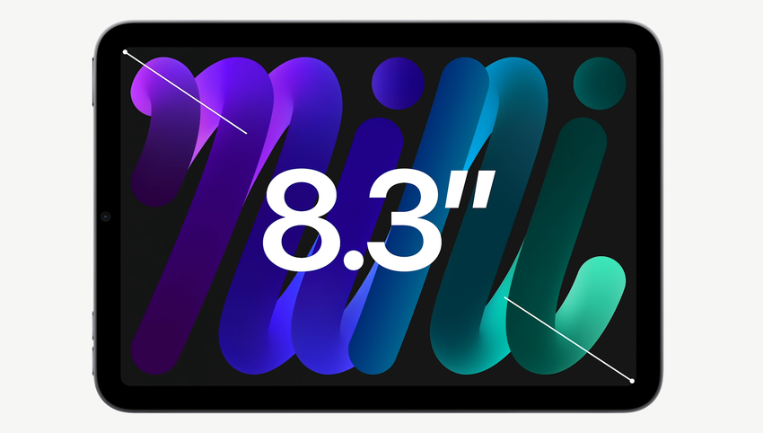 iPad mini (6).png