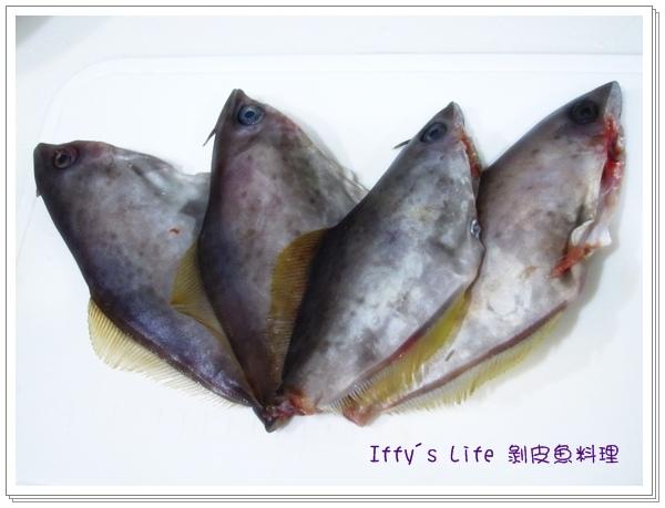 剝皮魚 (3).JPG