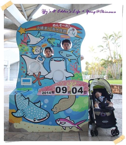 美之海水族館 (24).JPG