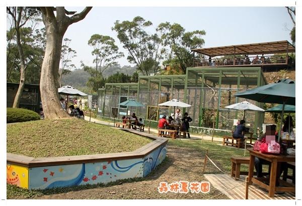 森林鳥花園 (29).JPG