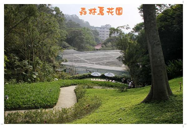 森林鳥花園 (31).JPG