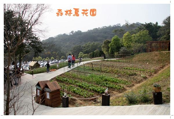 森林鳥花園 (32).JPG