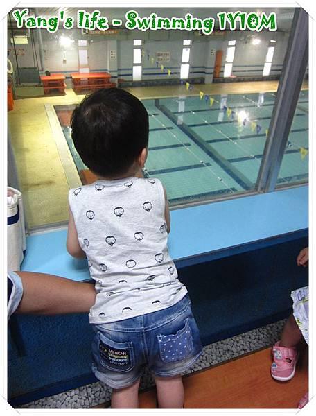 伊藤萬寶寶游泳 (1).JPG