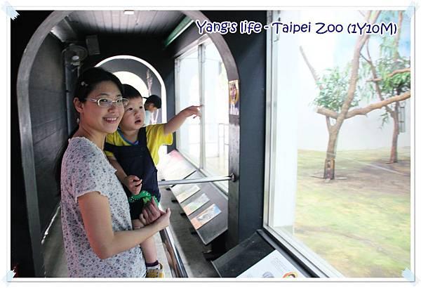Taipei Zoo (3).JPG
