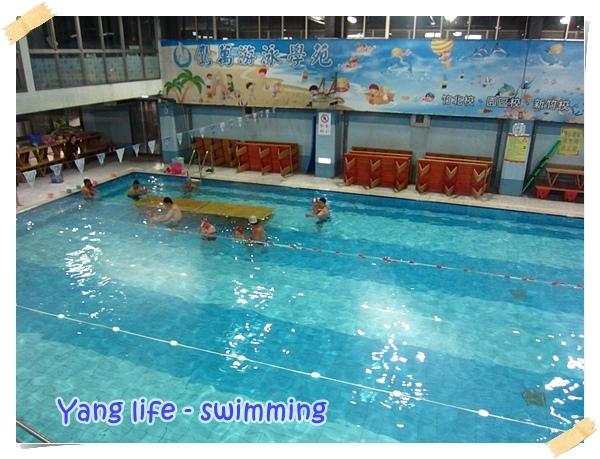 鷹萬嬰兒游泳 (8).JPG