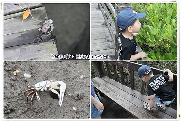 紅毛港+新月沙灘 (2).jpg