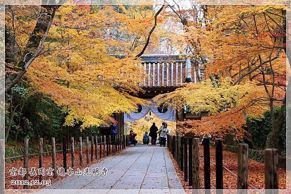 京都長岡京總本山光明市 (1).JPG