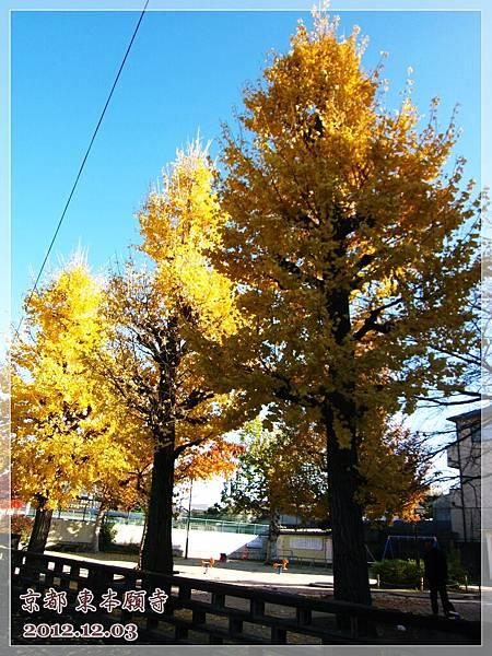 東本願寺 (11).JPG