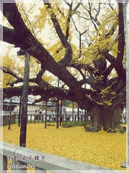 西本願寺 (3).JPG