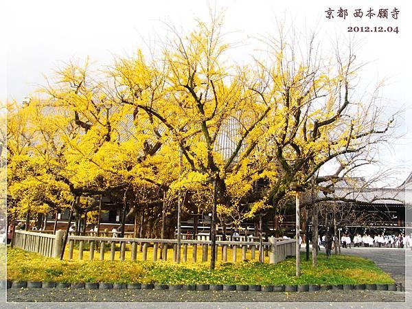 西本願寺 (5).JPG