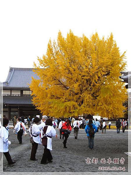 西本願寺 (4).JPG