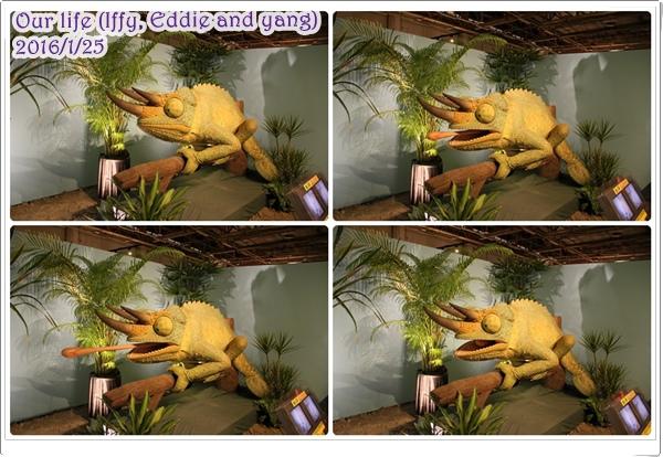 台中世貿恐龍展 (7).jpg