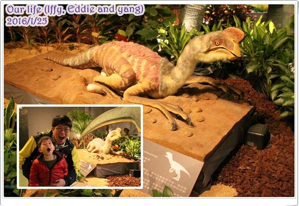 台中世貿恐龍展 (14).jpg