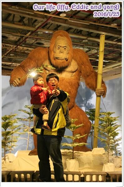 台中世貿恐龍展 (24).JPG