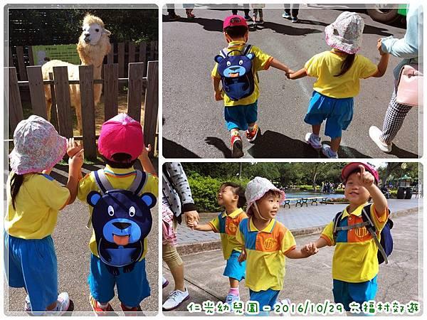 20161029_六福村 (2).jpg