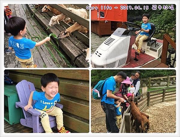 20170415_飛牛牧場 (1).jpg