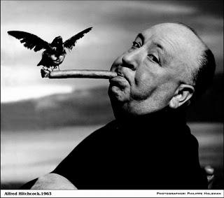 Hitch the bird.jpg