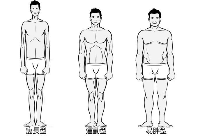 Bodytypes.jpg