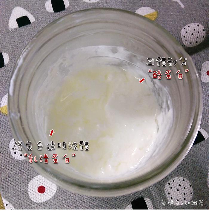 優格蛋白質.png