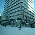 さっぽろ雪櫃 (59).JPG