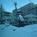 さっぽろ雪櫃 (67).JPG