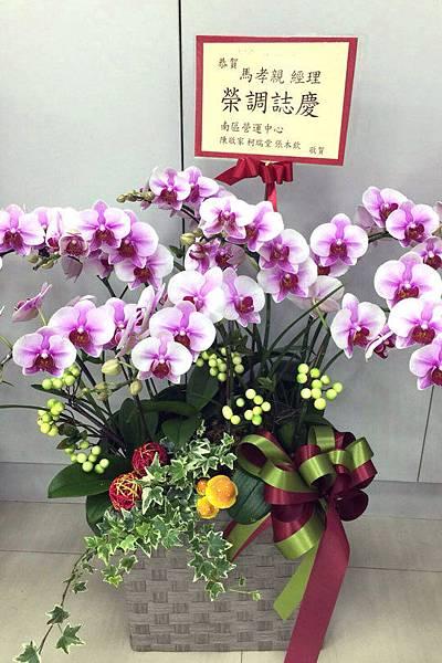 GO_180201 高雅蘭花