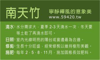 觀葉植物養護 (5).jpg