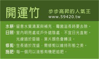 觀葉植物養護 (22).jpg