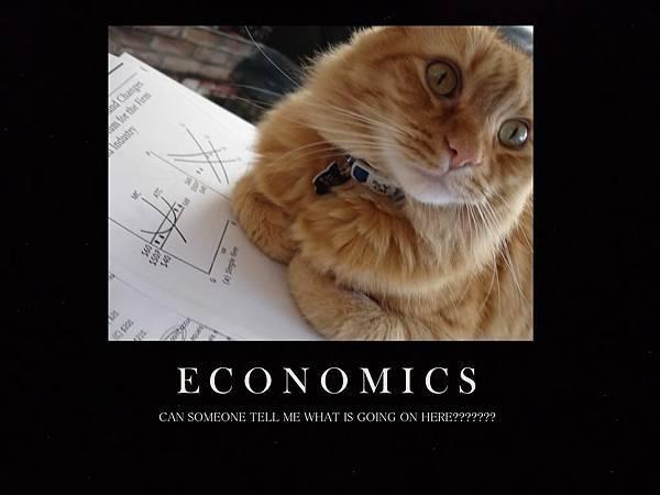 ECONOMICS (1).jpg