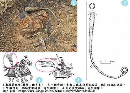 20120618考古現場_寄生