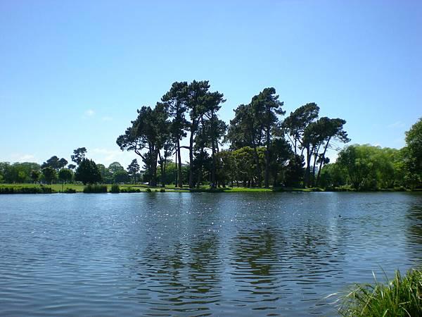 Botanic Garden-讓人感覺很平靜的Victoria Lake