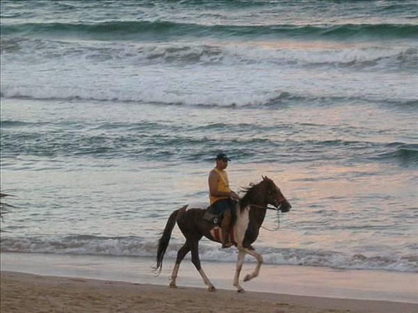 騎馬是巴西人常有的休閒