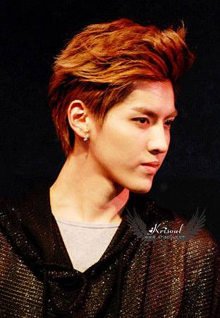 exo-kris-showcase
