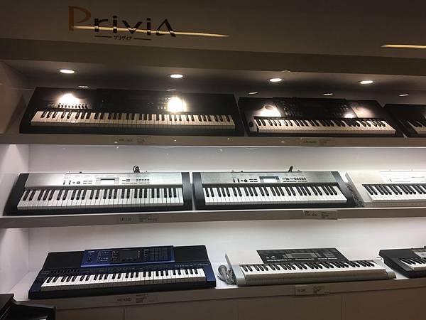 電子琴展示.JPG