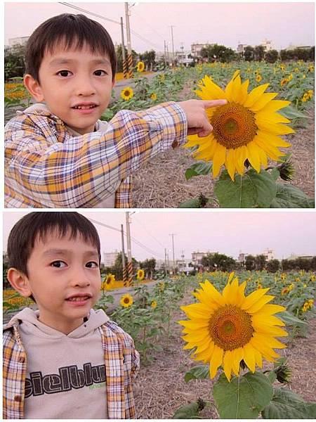太陽花與小孩