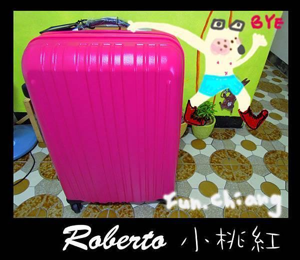 小桃紅行李箱拷貝.jpg