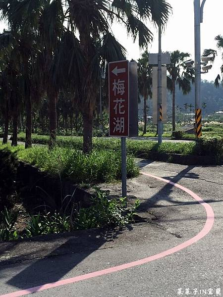 梅花湖_7648.jpg