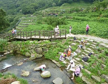 竹子湖照片07