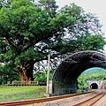 關於愛情的鐵道旅行2.jpg