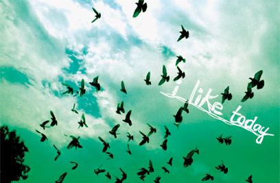i-like-today_winnowing正面.jpg