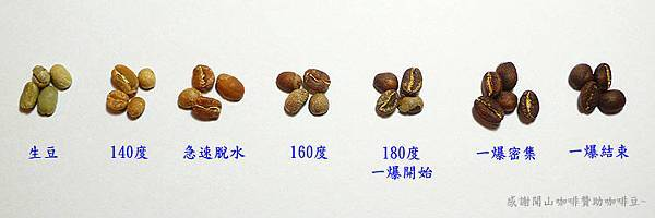 Coffee Bean Roast Timeline