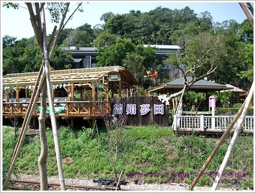 龍騰舊山線鐵道過去的後面全都是喆娟夢田