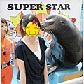 海獅玩親親,這位女孩是被同伴陷害推上台的(哈哈)