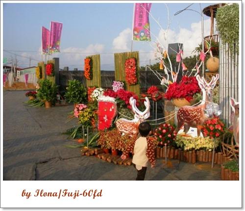 埔里花卉2.jpg