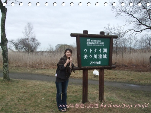 天鵝湖4.JPG