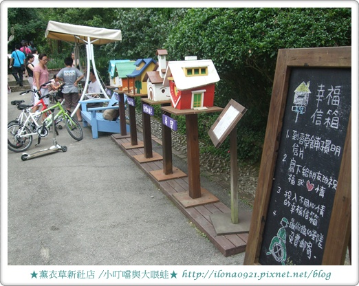 薰衣草9.JPG