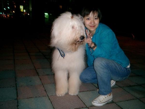 = =比人還要大的狗狗