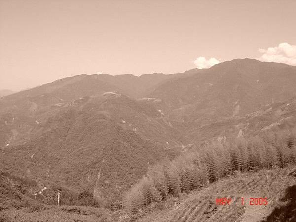 復古色之山景