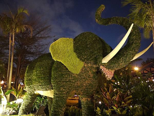 泰國-大象.jpg